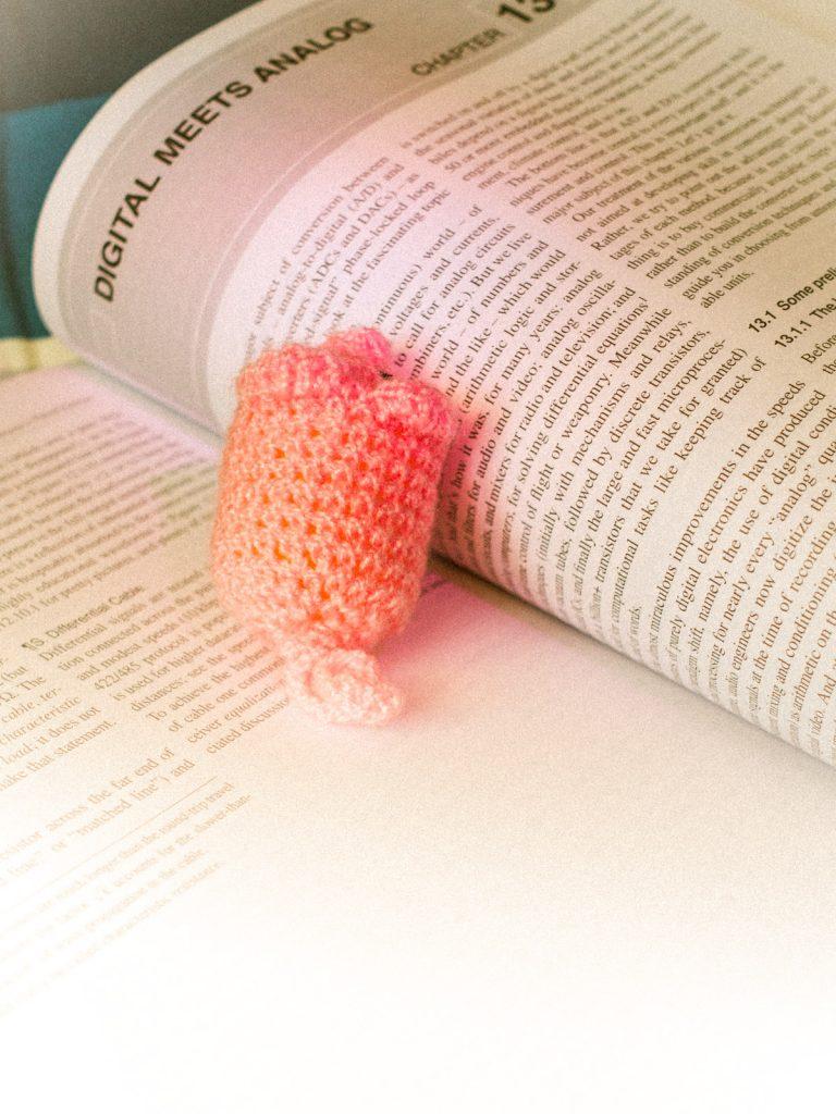 Häkelschwein auf Buch